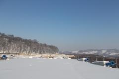 Kurów-18.01.2020